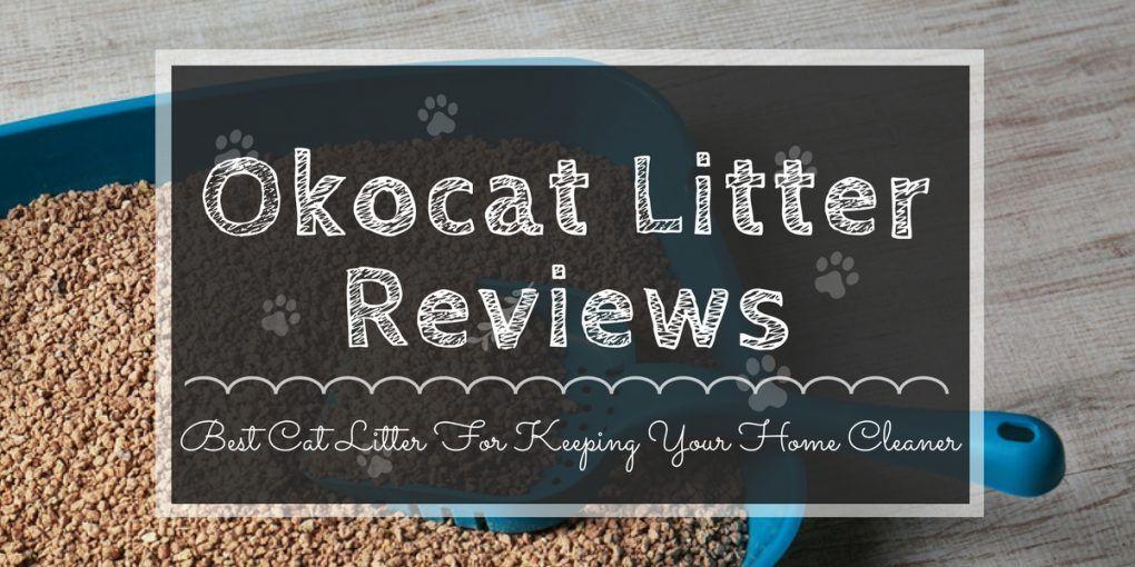 okocat-litter-reviews