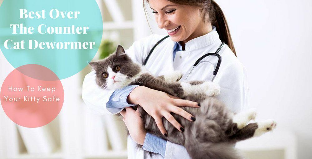 Best Over The Counter Cat Dewormer