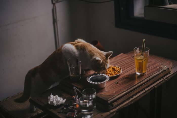 Excessive appetite