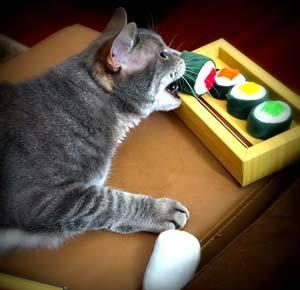 Munchiecat Sushi toys
