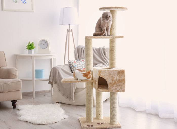 big cat tree house