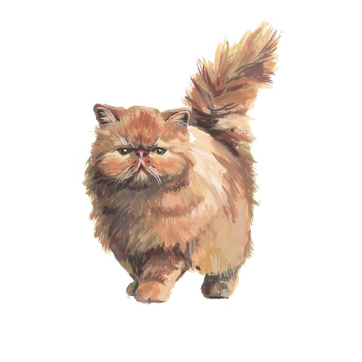 how to paint a cat portrait